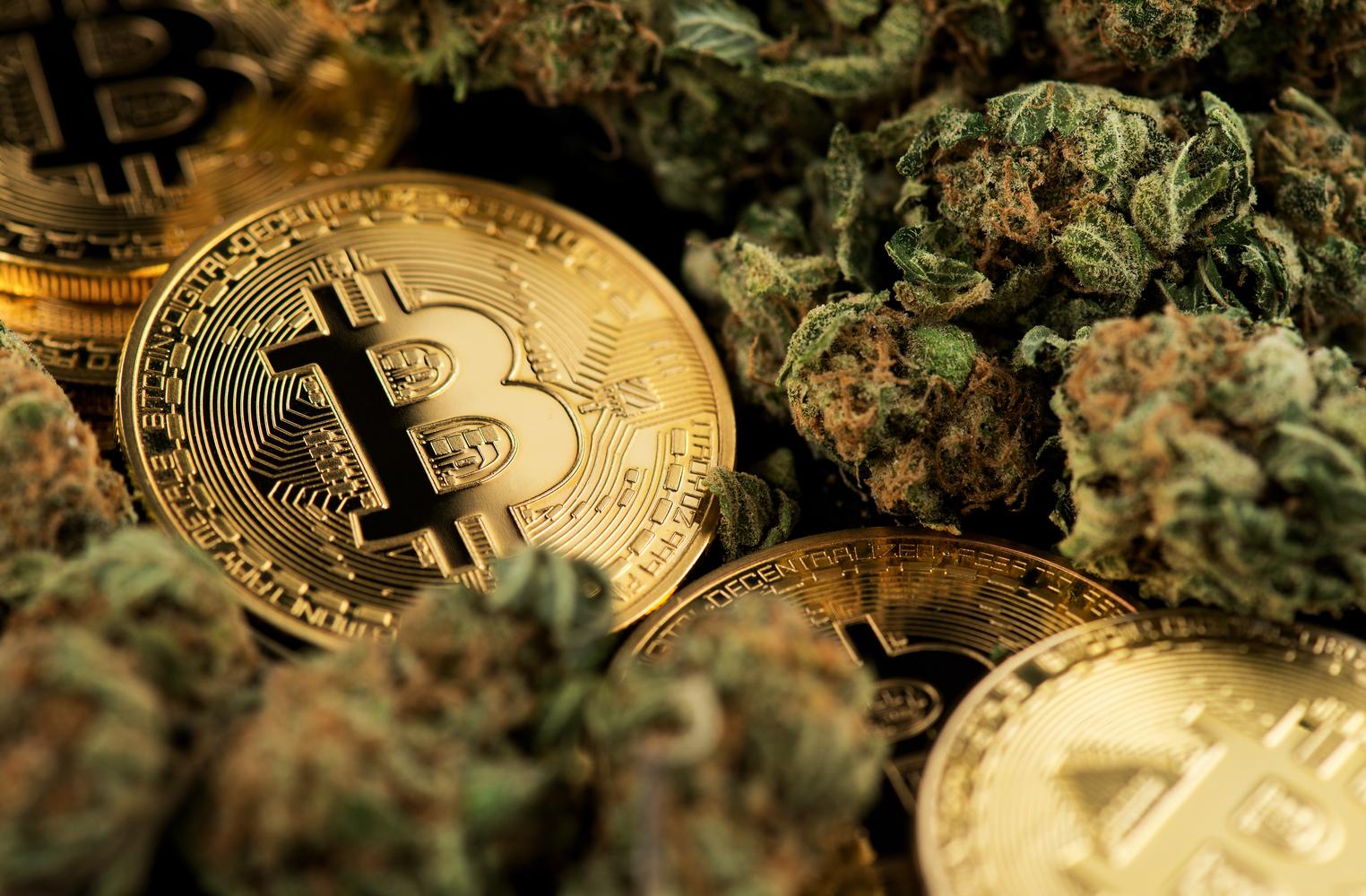 Acheter du cannabis avec des Bitcoins