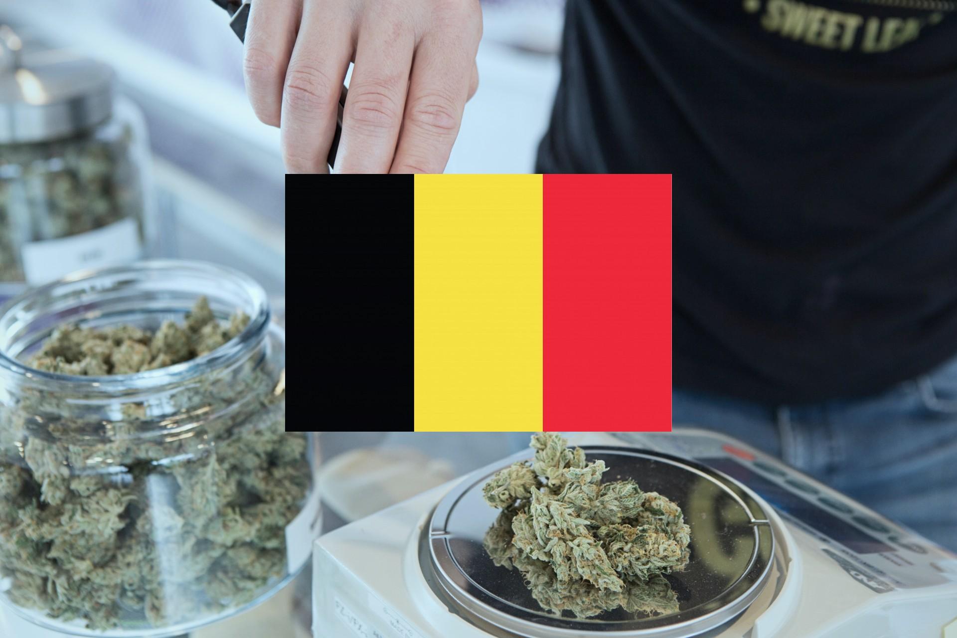 Comment acheter du cannabis et du hasch en Belgique?