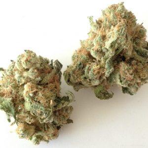 Acheter du cannabis White Widow en ligne